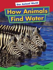 How Animals Find Water
