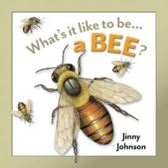 What's it like to be a Bee?