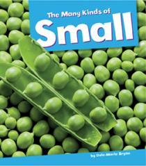 The Many Kinds of Small