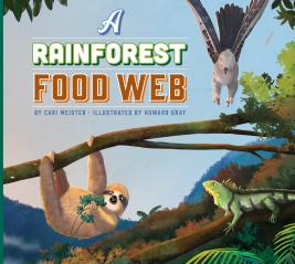 A Rainforest Food Web