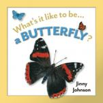 What's It Like to Be a Butterfly?