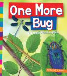 One More Bug: An Insect Addition Book